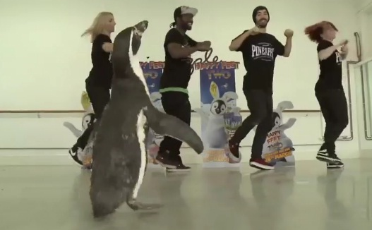 Pineapple Dance Studio Penguins Happy Feet Two