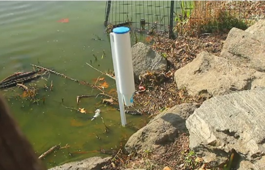 Cup dispensers placed next to polluted water spots in NYC highlights global water crisis