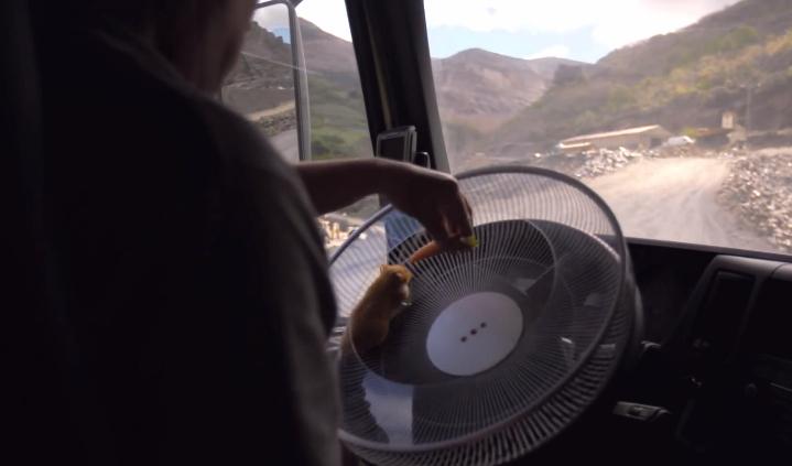 volvo truck hamster steering quarry