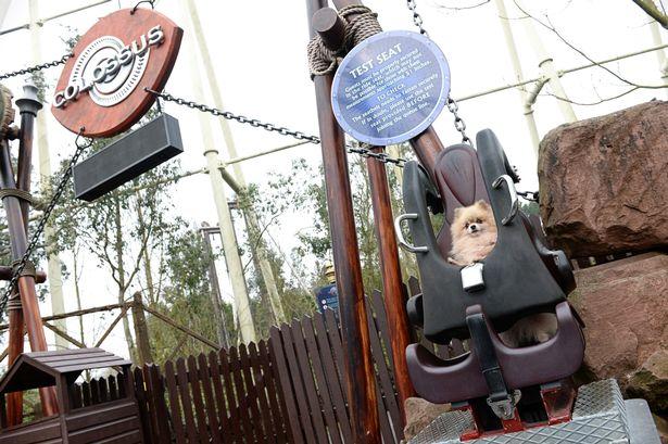 thorpe park dog park