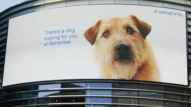 Battersea digital billboard